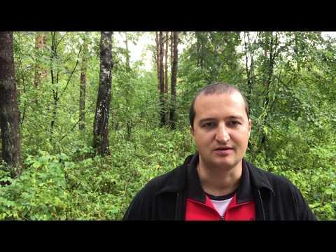 Рекомендация мастер класса Никиты Фофанова по продающим вебинарам на холодный трафик