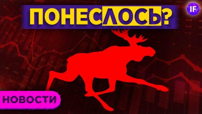 ПонесЛОСЬ? Топ-5 акций для защиты / Новости рынков